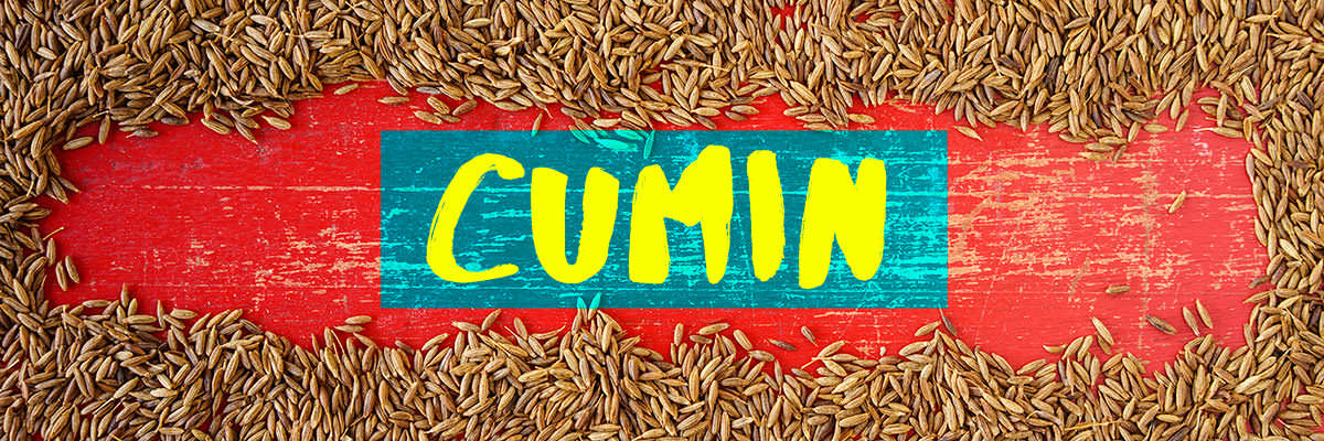 Cumin - 10 Spices to Always Keep in Your Pantry - Blog | Spice Trekkers