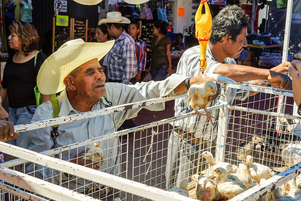 Tlacolula - Wandering the Markets of Oaxaca with Friends