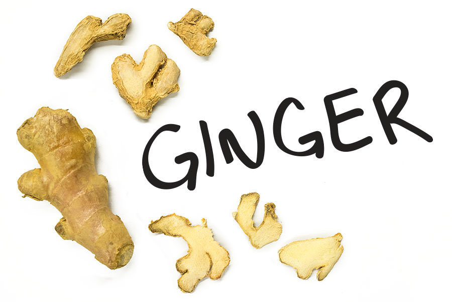 Gingers - Stalking Our Roots: Why We Love Rhizomes