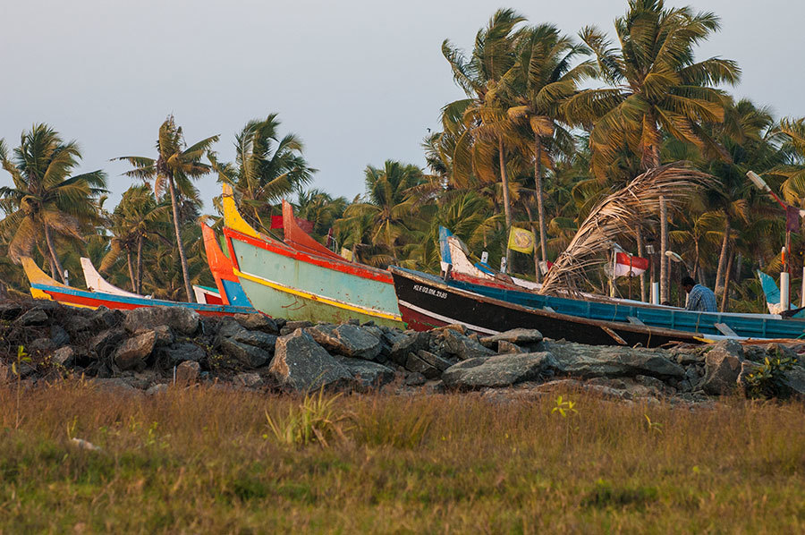 Tastes and Flavours: Southern India