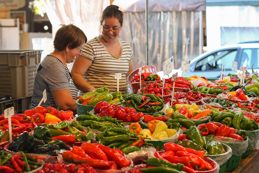 Jean-Talon Market - Palardy