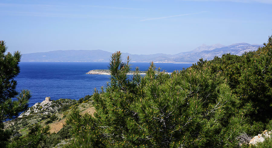 Tastes and Flavours: Crete and Provence