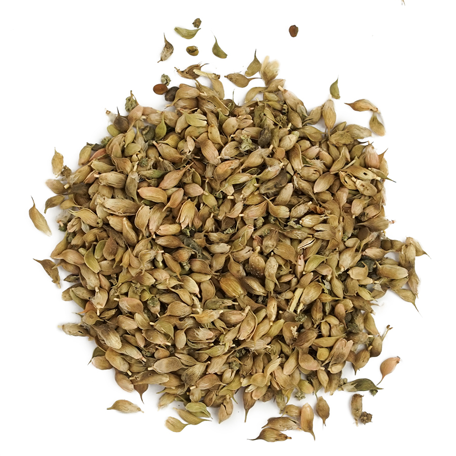 blue-fenugreek