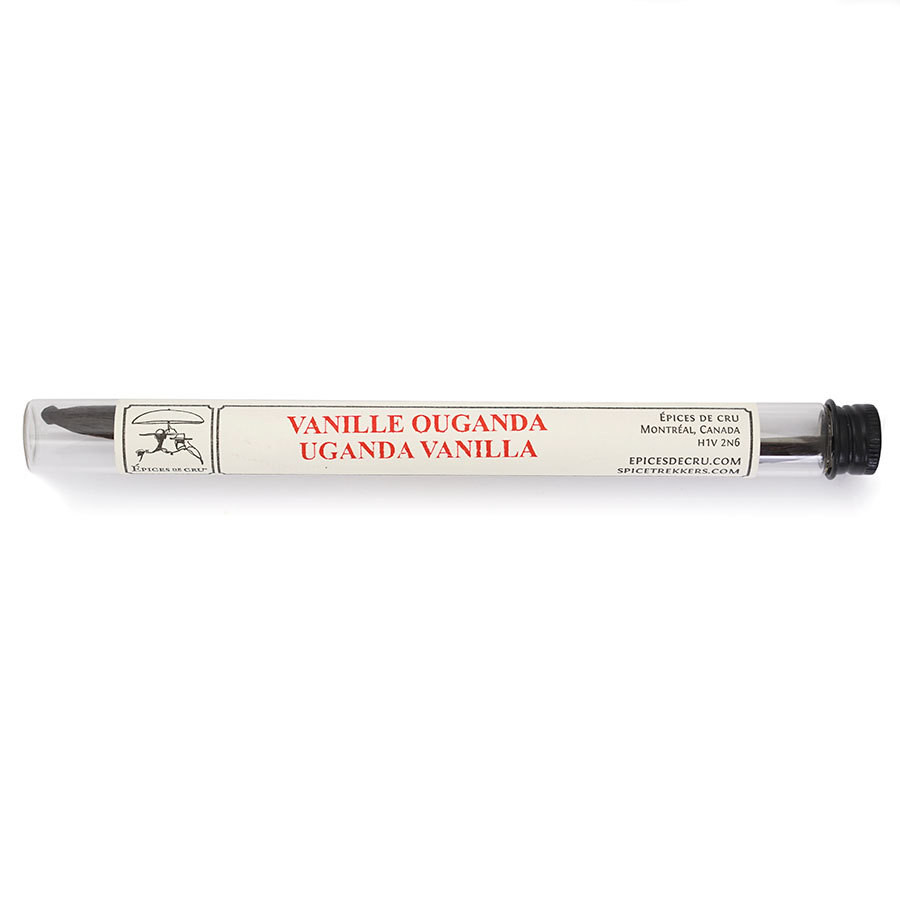 Vanilla Bean - Uganda - glass tube