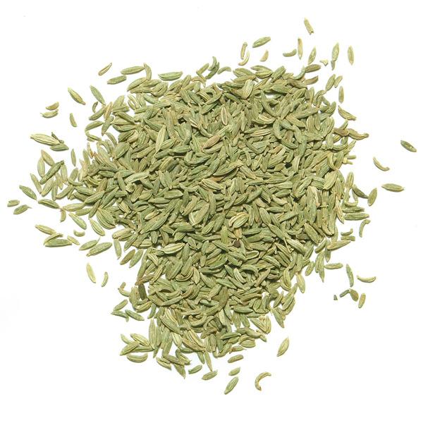 fennel lucknow buy online spice trekkers